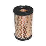 Air Filter / Tecumseh 35066