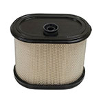 Air Filter / Briggs & Stratton 695302