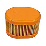 Air Filter / Briggs & Stratton 790166