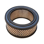 Air Filter / Briggs & Stratton 392286