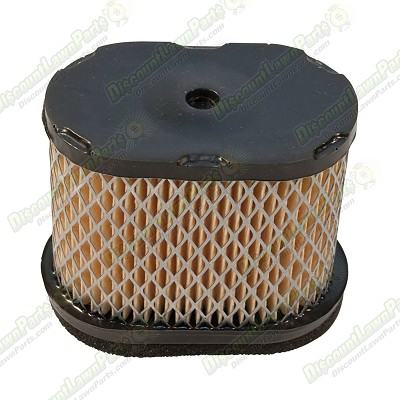 Air Filter / Briggs & Stratton 697029